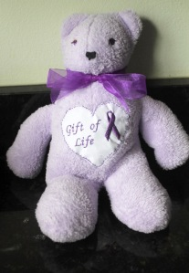 Bear with Bow and The Gift of Life